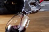 VacuVin Prevzdušňovač vína šedo-transparentný